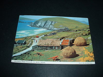 IRELAND J.H. POSTCARD SLEA HEAD DINGLE Co KERRY
