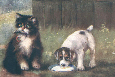 Cute Jack Russell Terrier Puppy & Kittens 1912  LARGE New Blank Note Cards
