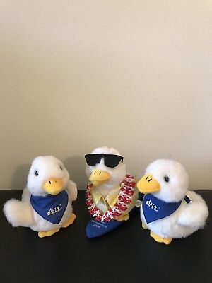 Lot 3 Aflac Advertising Plush Ducks Promotional Surf Board Stuffed Animals Toys