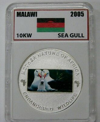 Malawi - 2005 - 10 Kwacha - Sea Gull - Endangered Wildlife Series