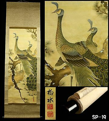 """Peacocks on Pine Tree"" Hanging Scroll by Ryusui 龍水 -Japan- Taisho Period"