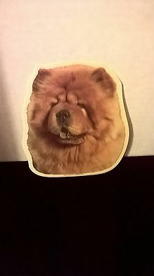 Chow Chow Window Decal Decals