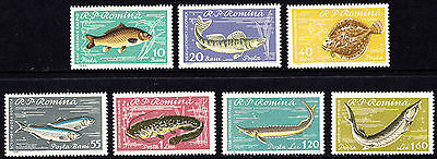 Romania 1960 Fish Complete set of Stamps MNH