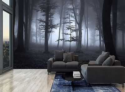 Fog Night Trees Forest Black & White Photo Wallpaper Wall Mural GIANT WALL DECOR