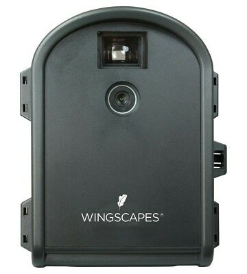 wingscapes timelapse camera outdoor