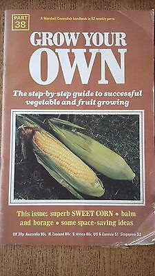 Grow Your Own SWEET CORN Vegetables Seeds Marshall Cavendish Handbook Part 38