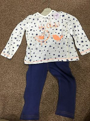New Baby Girl 12-18 Months Outfit 2 Piece Shimmer Flamingo Top & Jeggings BNWT