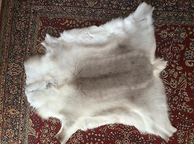 XX large pale grey and white thick and soft Reindeer hide skin rug throw