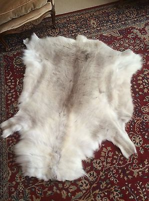 X large pale grey and white thick and soft Reindeer hide skin rug throw