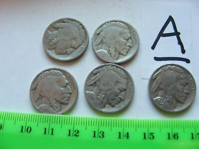 Lot of 5 USA Buffalo Nickels,Indian Head coin.(For Indian Motorcycle people too)