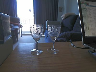 Vintage etched cordial glass stemware - set of 2 - circa 1950 - mint condition