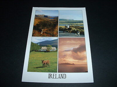 SOUTHERN .IRELAND POSTCARD GET WHAT YOU SEE (14 COMBINED POSTAGE ONLY 39p START