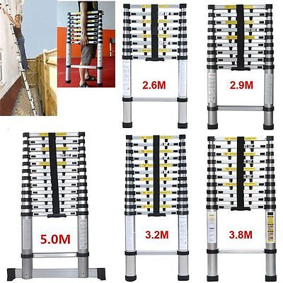 2.9M 3.8M 5.0M Aluminum Telescopic Ladder Folding Extendable Steps Ladder POP