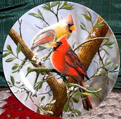 Limited Edition of THE CARDINAL plate by kevin daniel