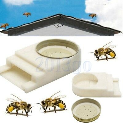 Abeille Entrée Alimentateur Apiculture Ruche Beekeeper Bee Hive Keeping Equip HG