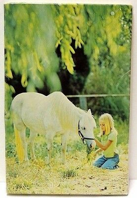 "Horse Stationery Set w/ Lined Envelopes 5 Designs in ""Lap Pack"" Type Folder"