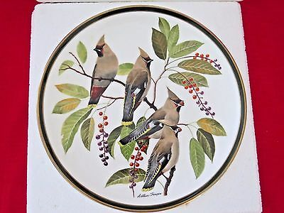 REDUCED-Wedgewood Songbirds of the World Collector Plate
