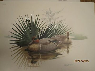 """Richard Sloan Lithograph Green Winged Teal 22"""" x 28"""" COA Signed not displayed"""