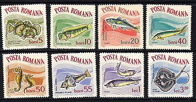 Romania 1964 Fish Complete Set of Stamps MNH