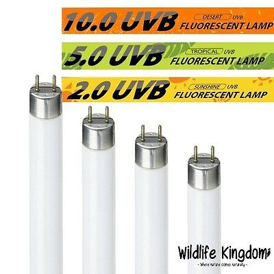 Reptile Flourescent Glo Tube Lamp Uv Bulb Vivarium Reptile Repti Pet Light