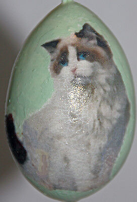 gourd Christmas ornament with ragdoll cat