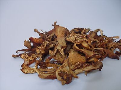 Yellow Chanterelle Girolle Mushrooms Dried, Wild Forest Cantharellus cibarius