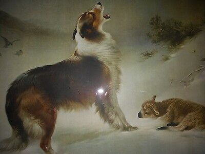 """Shepherds Call or Found Collie Rescues Lamb Snow Framed Print 17 x 21"""""""
