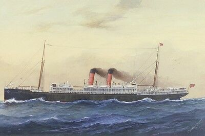 MAHENO (1) of the UNION SS Co New Zealand digital Art Postcard Modern