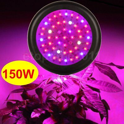 150W Mini UFO Full Spectrum LED Indoors Plant LED Grow Light with IR UV lights
