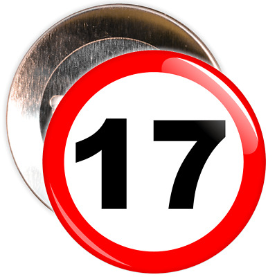 17th Birthday Badge Speed Limit Sign - 2 Different Sizes