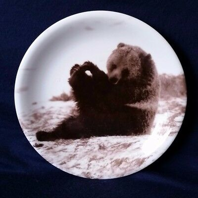 Yellowstone Park Foundation Bear Cub Salad Plate Tom Murphy