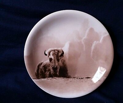 Yellowstone Park Foundation Buffalo Salad Plate Tom Murphy