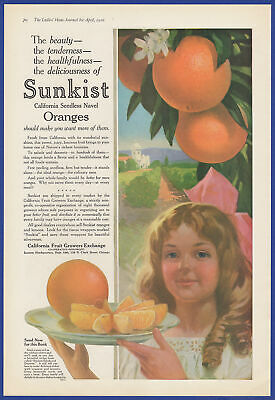 Vintage 1916 SUNKIST Oranges California Fruit Growers Exchange Chicago Print Ad