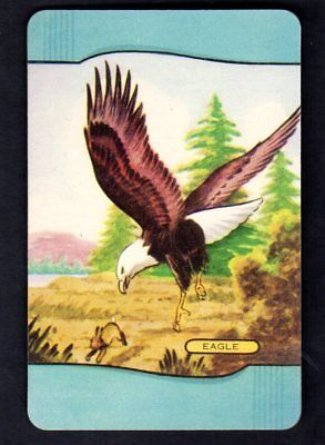 Coles Swap Card - Eagle