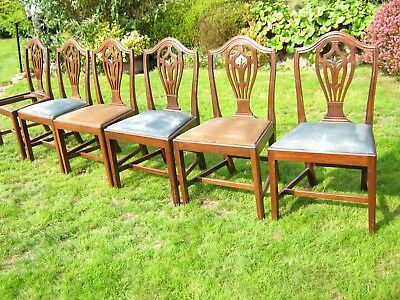 6 Hepplewhite Style Shield Back Dining Chairs with Lift Out Seats and Stretchers