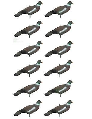 12 Pigeon Decoy Shells High Definition Decoying Shooting HD Painted Rocker Pegs
