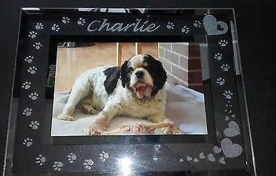 Personlised Hand Engraved Glass Photo Frame Pet Cat Dog Memorial Remembrance