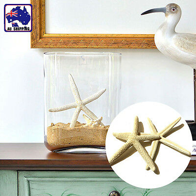 5pcs 5-10CM Fingers Starfish Sea Beach Wedding Coastal Decor Craft HDNB38800x5