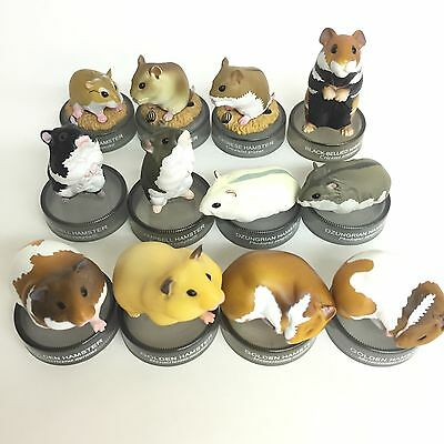 Kaiyodo Hamster's Lunch Bottle Cap Mini Figure 12pcs Set Japan