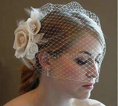 Fascinator Vintage Flower Wedding Bridal Birdcage Face Cover Veil with Comb