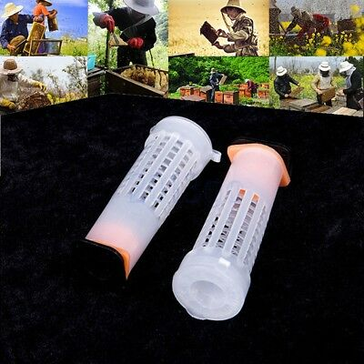 10 PCS Beekeeping Rearing Cup Kit Queen Bee Cages Beekeeper Equipment Tool HG