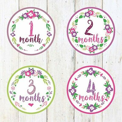 Baby Monthly Stickers- 1-12,Baby Girl,Photo Prop,Baby month stickers