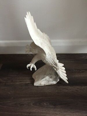 Solid Wood Bird Of Prey Hand Carved