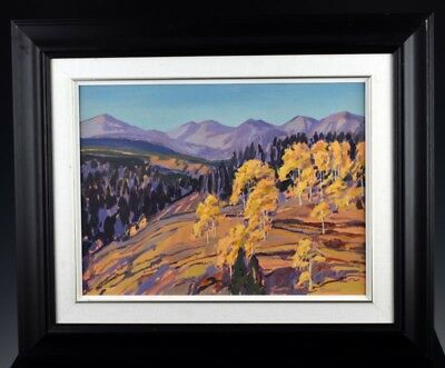 Fine Willian Duma Canadian Alberta Fall Landscape Oil Painting On Canvas Board
