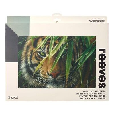 Reeves Large Tiger Painting By Numbers Set Acrylic Paint & Brush Kit