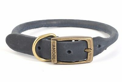 ** Clearance Sale** Ancol / Timberwolf Leather Round Collar (Blue)