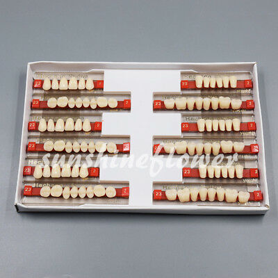3 Set of 84 Dental Acrylic Resin Denture Teeth VITA Color A2 Upper+Lower Shade