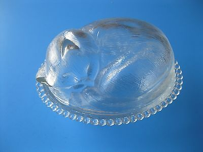 SLEEPING CAT Trinket Jar Clear Glass Collectible Animal