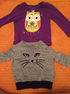 Baby Gap Girl Size 12-18 Months Lot Sweater And Long Sleeve Shirt Fall/winter