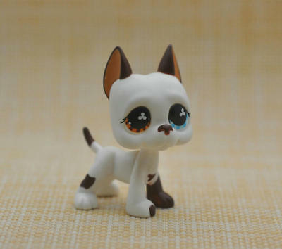 Littlest Pet Shop LPS Brown Flower Great Dane Dog Tattoo Green Eyes #577